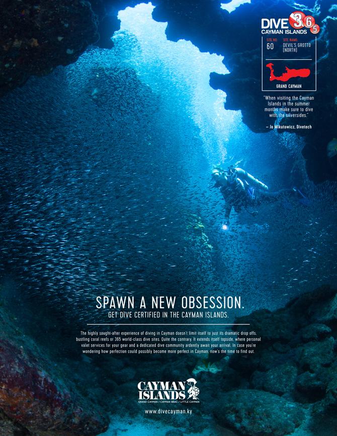 Cayman Islands Dive 365 - Chris Browne Art Director